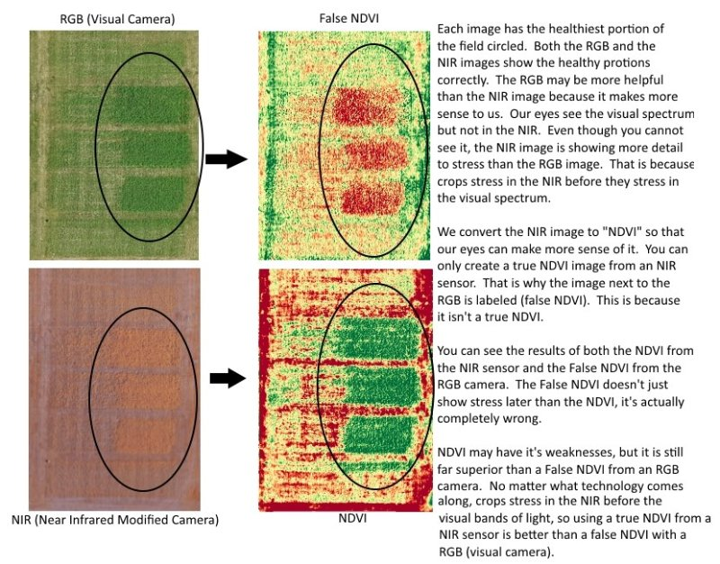 Comparison of False NDVI and real NDVI