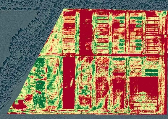 True NDVI map computed from NIR images