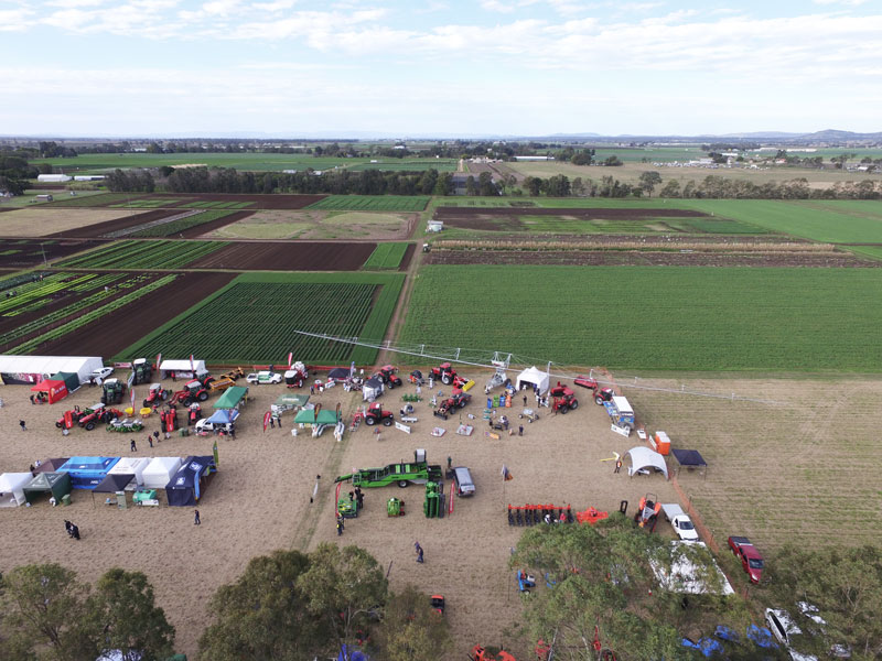 Gatton Horticulture Expo